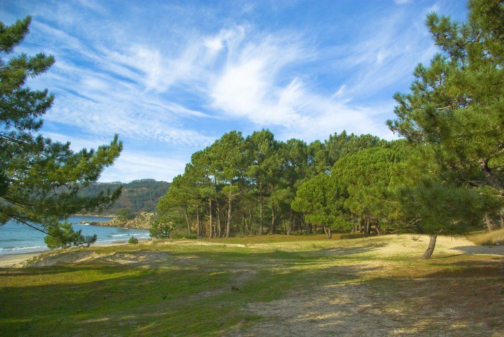 ley del suelo de galicia