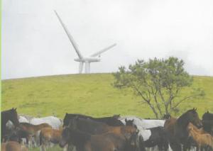 organizacion-galega-comunidades-montes