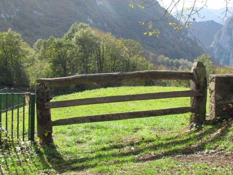 Profundizando en la gobernanza de los montes comunales